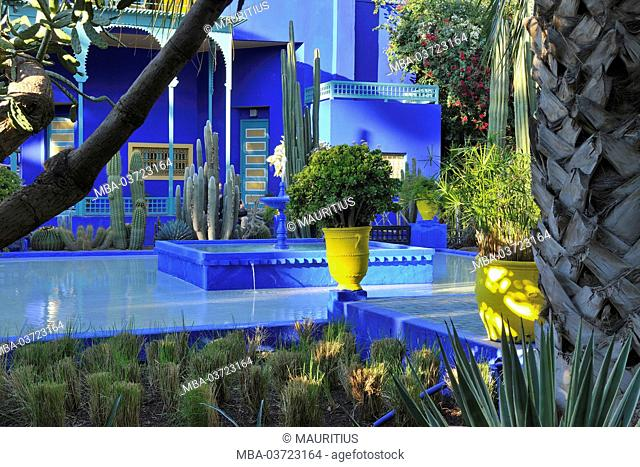 Jardin Majorelle, botanical garden, Marrakech, Morocco