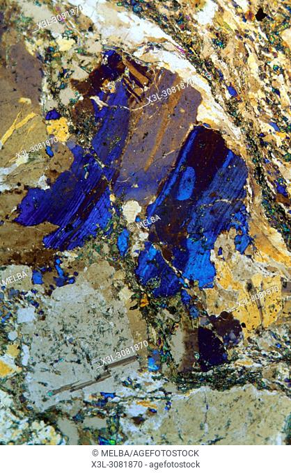 Gneiss rock. Metamorphic rock. The Costa Brava. Gerona. Spain. Petrographic microscope