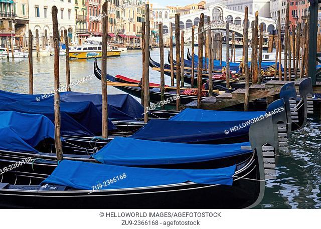 Many gondolas moored along the grand canal near Rialto Bridge, Venice, Veneto, Italy, Europe