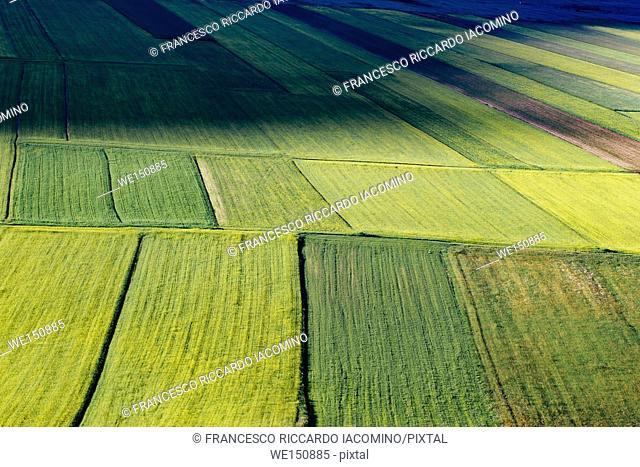 Piana Grande, Castelluccio di Norcia, Umbria, Italy. valley landscape