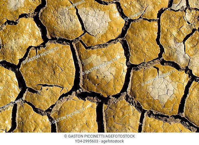 Mud cracketated, Hyden Rock, Western Australia, Australia