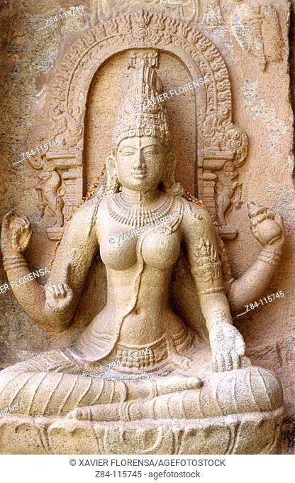 Relief. Temple of Gangaikondacholisvara. Gangaikonda Cholapuram. Tamil Nadu, India
