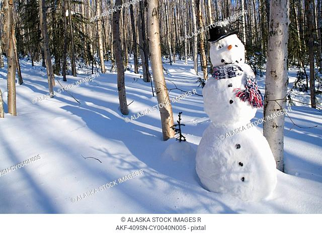 Snowman in top hat & scarf deep in birch forest interior Alaska Winter