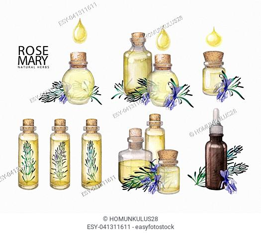 Collection of watercolor essential oil bottles decorated with rosemary twigs. Hand painted natural design isolated on white background