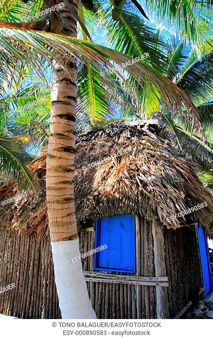 beautiful coconut palm trees palapa hut beach