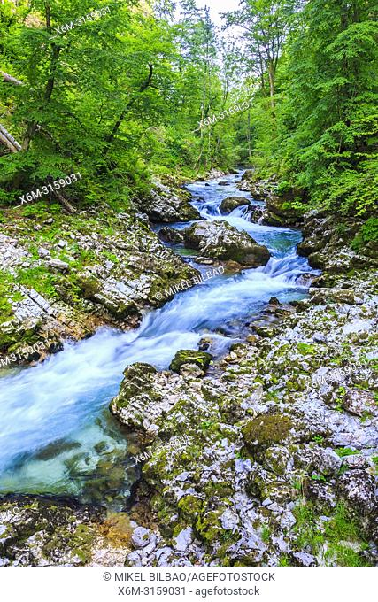 Vintgar Gorge. Upper Carniola region. Slovenia, Europe