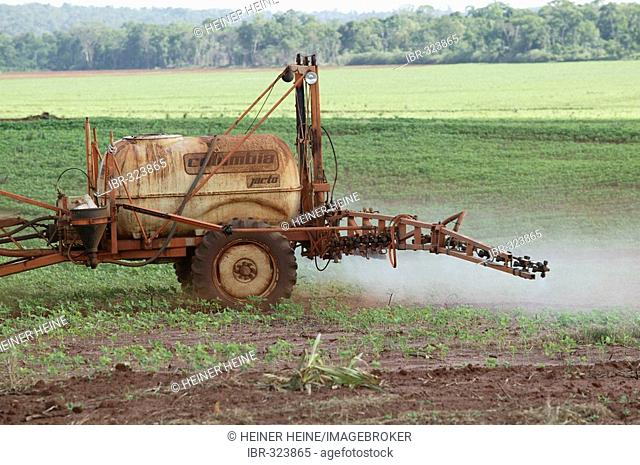 Spraying pesticides on a soy field, genetically altered, Paraguay, South America
