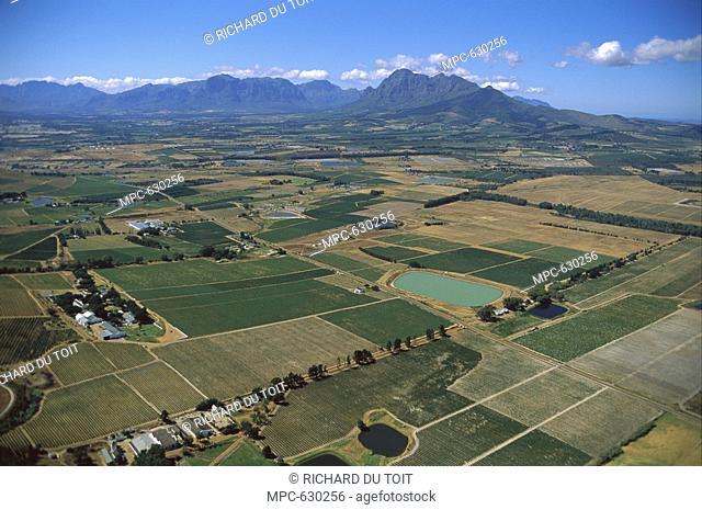 Wine lands near Stellenbosch, South Africa