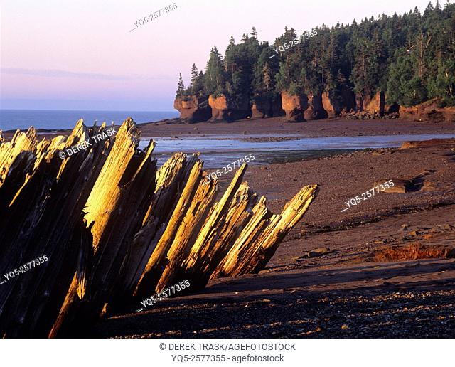 North America, Canada, New Brunswick, Bay Of Fundy, Hopewell Rocks, wood tidal barriers, world's highest tides rise 35'