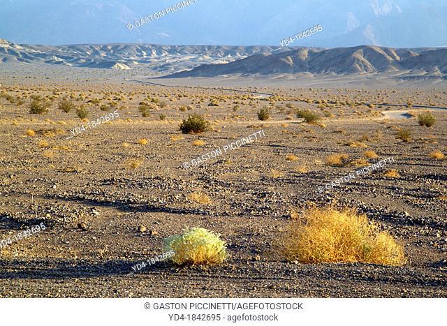 Death Valley National Park, California/Nevada, USA