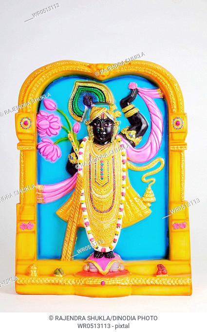 Statue of lord shrinathji , India