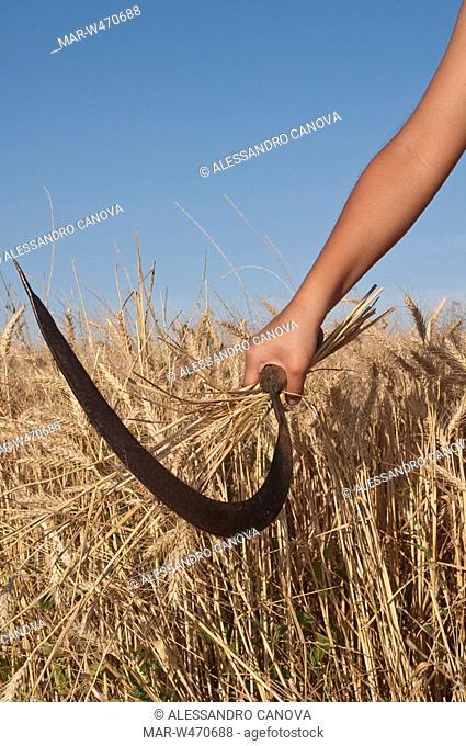 hand holding a scythe