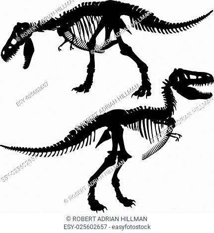 Editable vector silhouettes of the skeleton of a Tyrannosaurus rex dinosaur