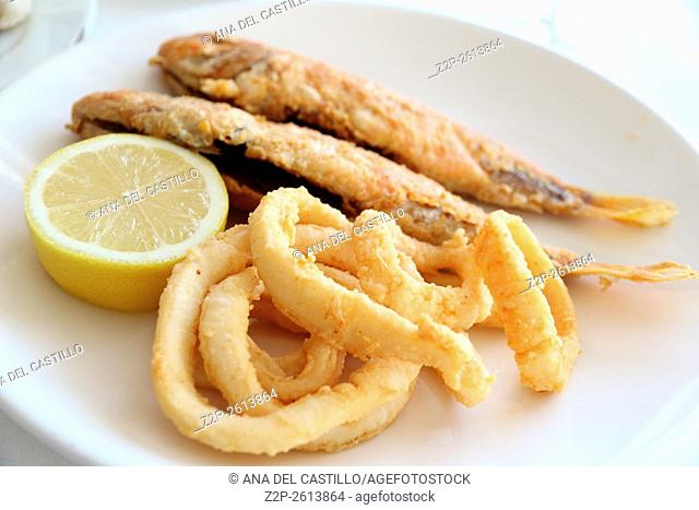 Calamari rings and fish on plate