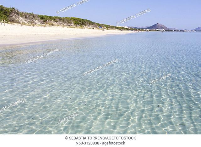 Playa de Muro, Santa Margalida, Majorca, Balearic Islands, Spain