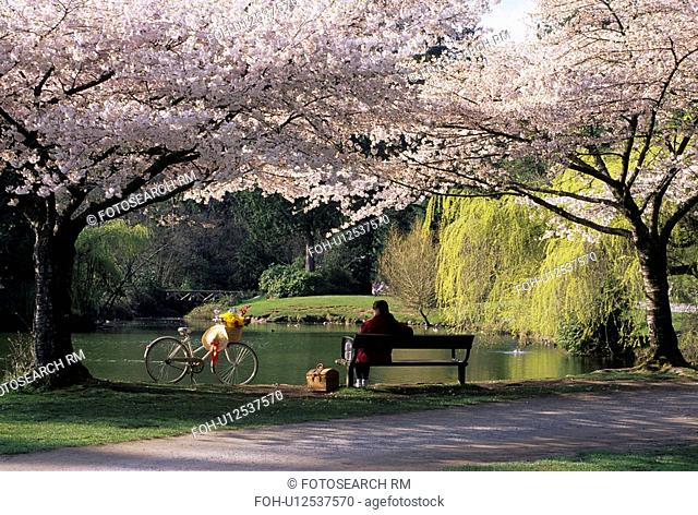 flowers food spring rw 10214 mr 01 central park