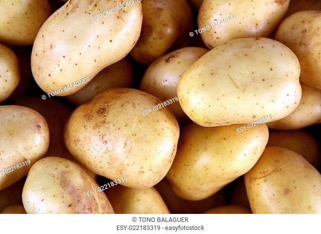 potatoes on market texture background