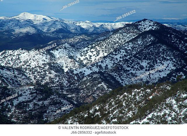 Winter landscape from the Espadán peak, in the background the Pina peak. Natural park Sierra Espadán. Castellón