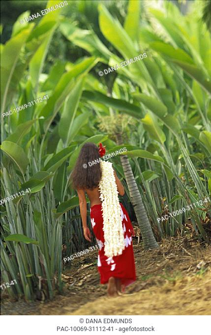 Hawaiian woman walks tropical surrounding, red pareo white strands hang over shoulder red hibiscus hair back view
