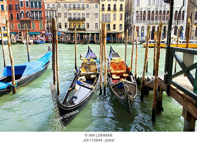 Gondolas moored on sunny canal in front of architectural buildings on the Grand Canal, Venice, Italy