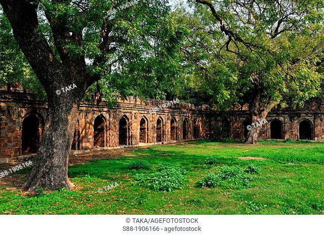 Lodhi garden in New Delhi