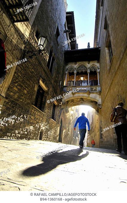 Bisbe Irurita street (Carrer del Bisbe), Gothic quarter, Barcelona, Catalonia, Spain