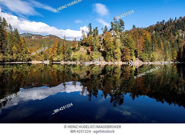 Kleiner Ödsee autumn, Totes Gebirge, Almtal, Salzkammergut, Upper Austria, Austria