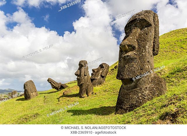 Moai sculptures in various stages of completion at Rano Raraku, the quarry site for all moai on Easter Island, Isla de Pascua, Rapa Nui, Chile