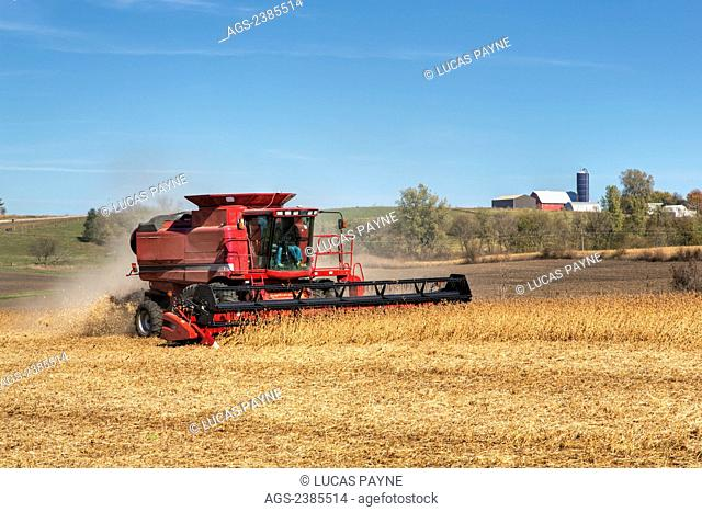 Red combine harvesting beans on a sunny autumn day in Northeast Iowa; Iowa, United States of America
