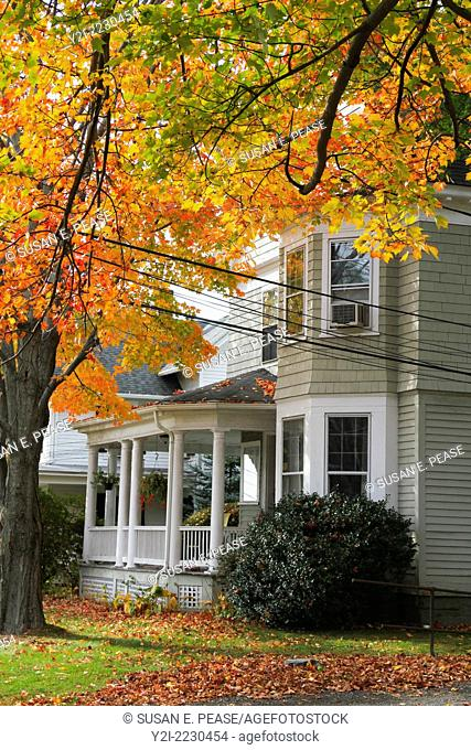 Autumn leaves capture the sunlight near a home in Litchfield, Connecticut, USA