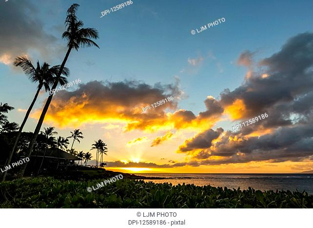 A golden sunset with glowing clouds over the ocean and horizon, with silhouettes of palm trees and restaruant patio umbrellas wiht lush green foliage in the...