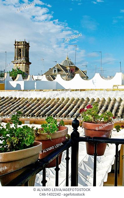Barrio de la juderia  City of Sevilla  Andalucia  Spain