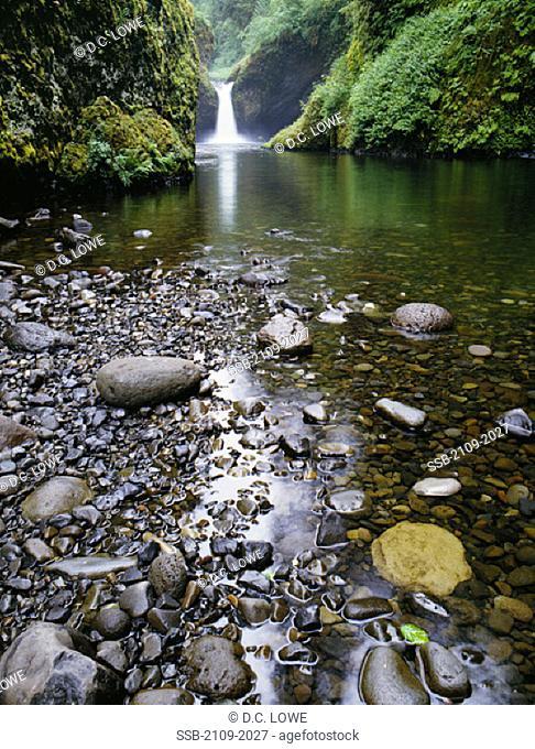 Punchbowl FallsColumbia GorgeOregon, USA