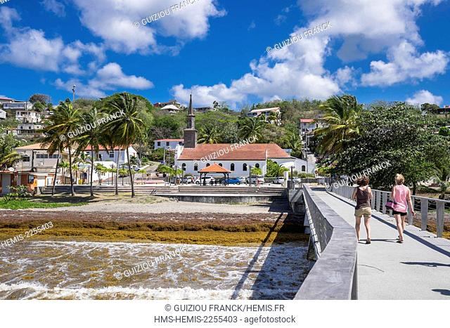 France, Martinique, Le Diamant, the beach covered with sargassum weed, Saint-Thomas church in the background