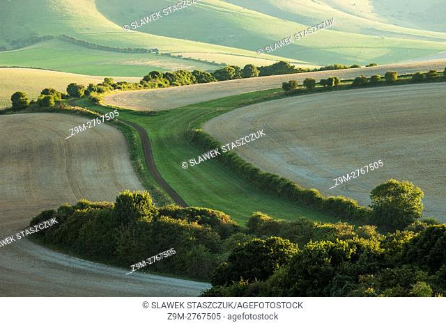 Late summer evening in South Downs National Park near Lewes, East Sussex, England