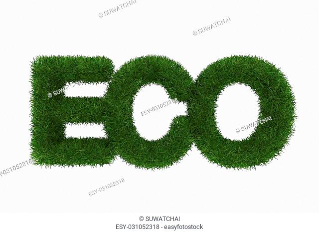 Eco word made of green grass ,3d