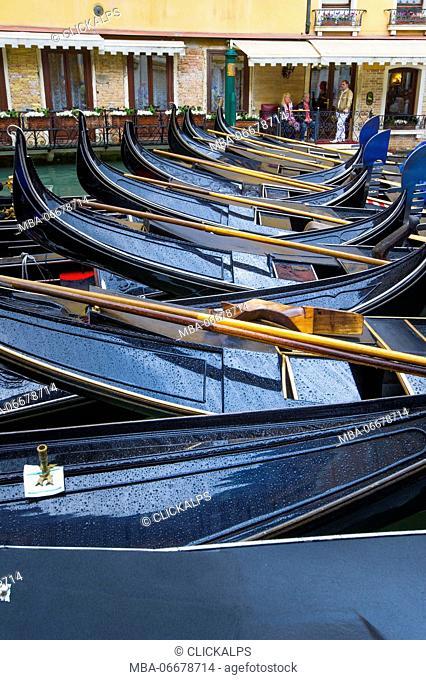 Parked gondolas. Venice, Veneto, Italy