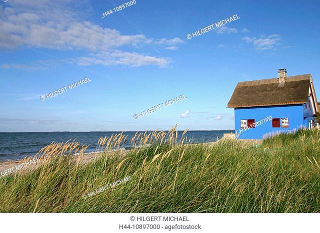 Beach, dune, summer, cottage, Graswarder, Heiligenhafen, Baltic Sea, Schleswig-Holstein, Germany, Europe