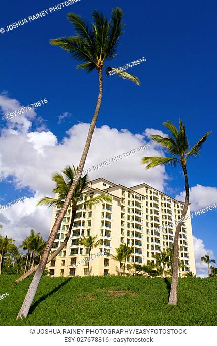 Palm trees stand in front of this beautiful time share condo hotel building on the island of Oahu Hawaii. This resort is in a tropical lush location near a...