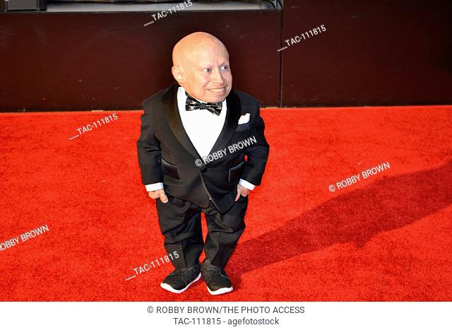 Verne Troyer attends the 2015 Celebrity Fight Night red carpet at JW Marriott Desert Ridge Resort and Spa