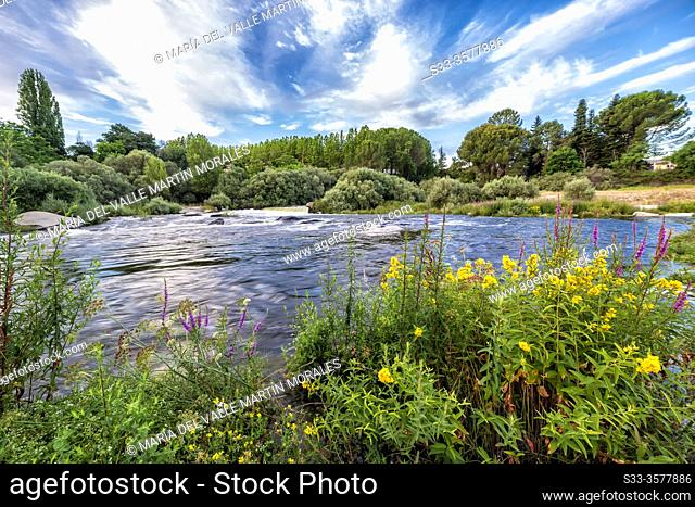 River Alberche in summer time. Cebreros. Avila. Spain. Europe