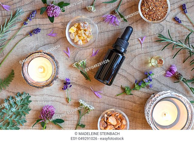 Bottles of essential oil with frankincense, hyssop, wormwood and other herbs on a wooden background