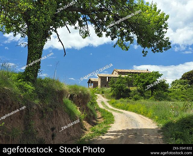 Dirt road leading to farmhouse. Lluçà village countryside. Lluçanès region, Barcelona province, Catalonia, Spain