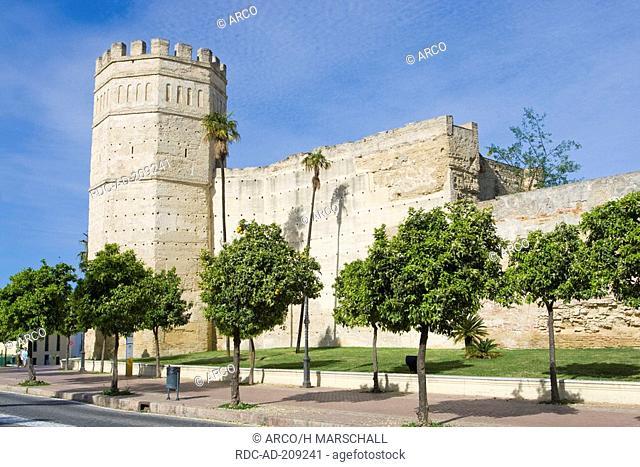Octagonal tower, part of Alcazar, 12th Century, Jerez de la Frontera, Costa de la Luz, Andalusia, Spain