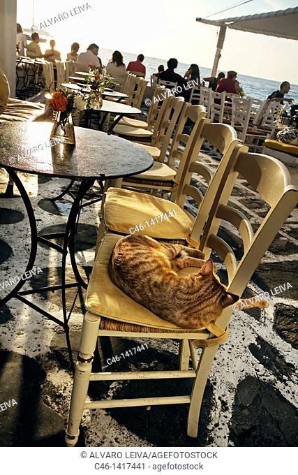 Restaurants in the quarter of Alefkandra  Mykonos  Cyclades Islands  Greece