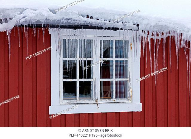 Icicles hanging from frozen gutter in front of window of red wooden cabin in winter, Scandinavia