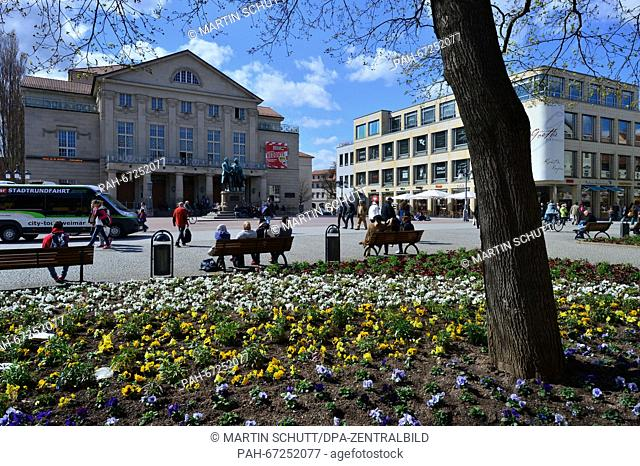 Pansies growing on a large flower bed at the Theatre Square inWeimar, Germany, 06 April 2016. Photo: MARTINSCHUTT/dpa | usage worldwide