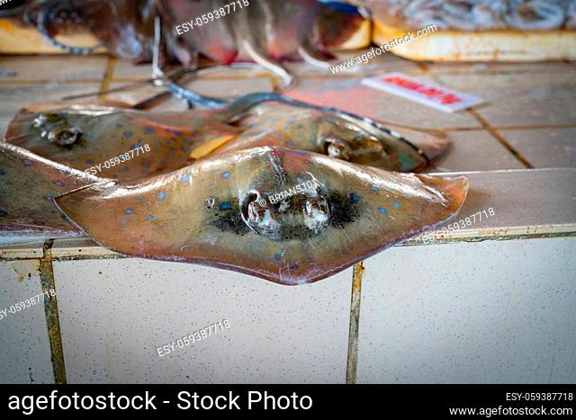 fresh stingray in city's wet or fish market near wharf stingray for sale at a fishmarket