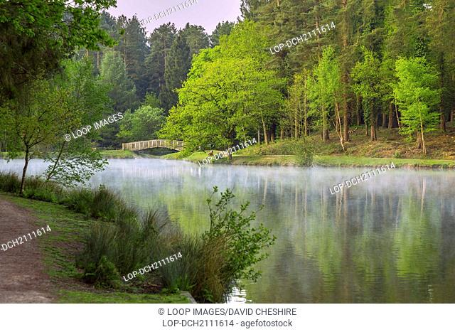 Mallard's Pike lake in the Forest of Dean