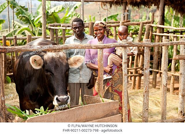 Family standing beside Jersey cow, donated by charity to provide milk, Rwanda